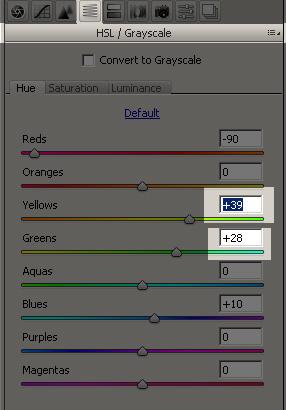 HSL/Grayscale tab. Hue subtab.